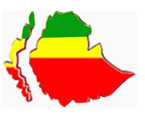 ethiopian-territory-protest1